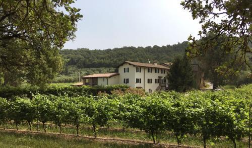 Agriturismo Ca' Castellani, Verona
