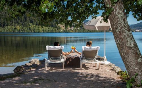 Appart'hotel Lido, Vosges