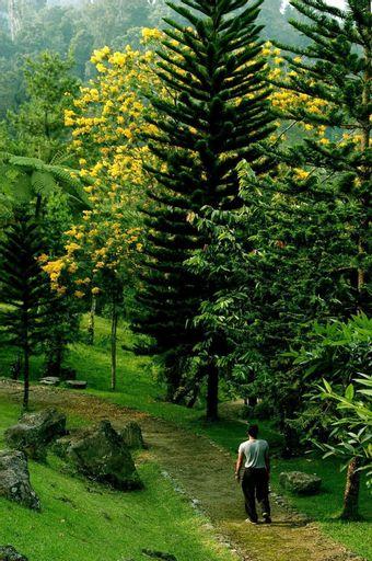 Javana Spa & Resort, Sukabumi