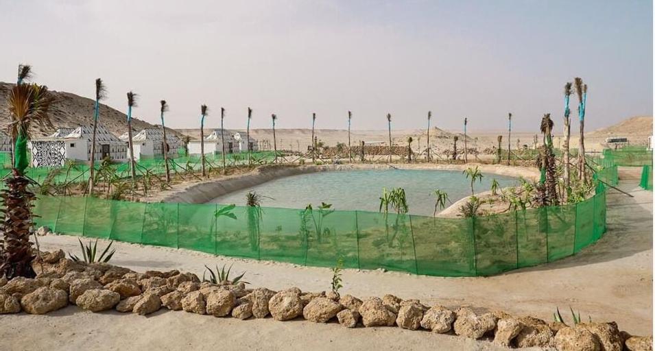 Les Dunes de Dakhla,