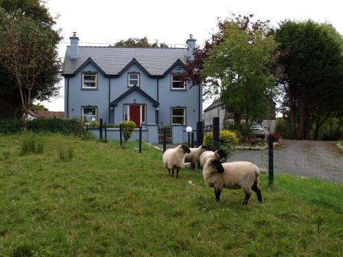 Ardvarney Country Lodge,