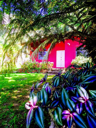 Pink house, San Antonio Palopó