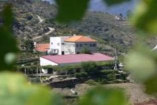 Quinta de Santo Antonio, Tabuaço