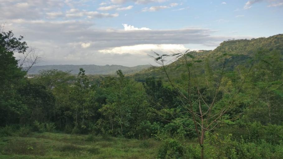 Gunung Kucing Hospiz, Bantul