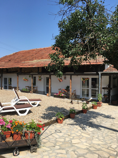 Sunflower Guest House, Polski Trambesh