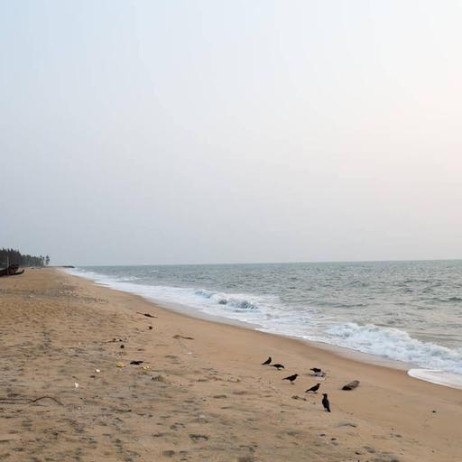 Kuzhupilly Beach House, Ernakulam
