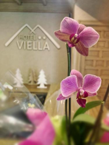 Hotel Viella, Lleida