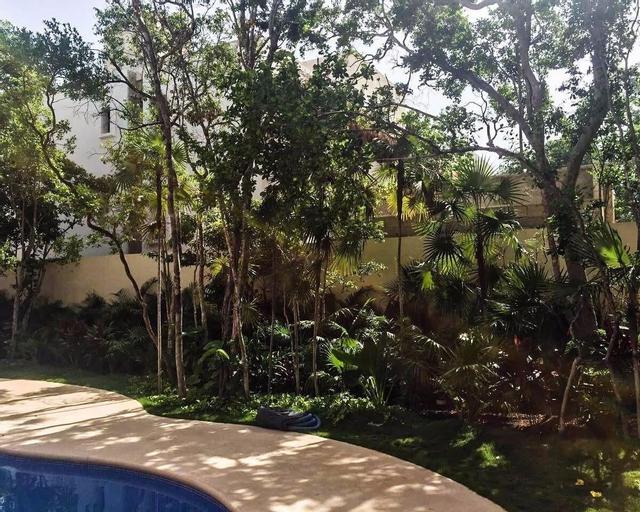 Paramar 003, Cozumel