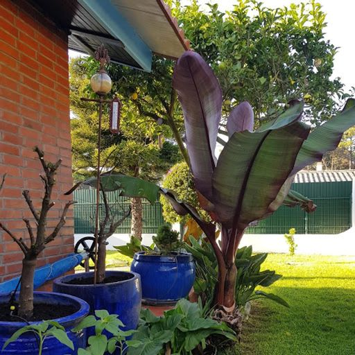 House With 2 Bedrooms in Aroeira, With Private Pool, Enclosed Garden a, Almada