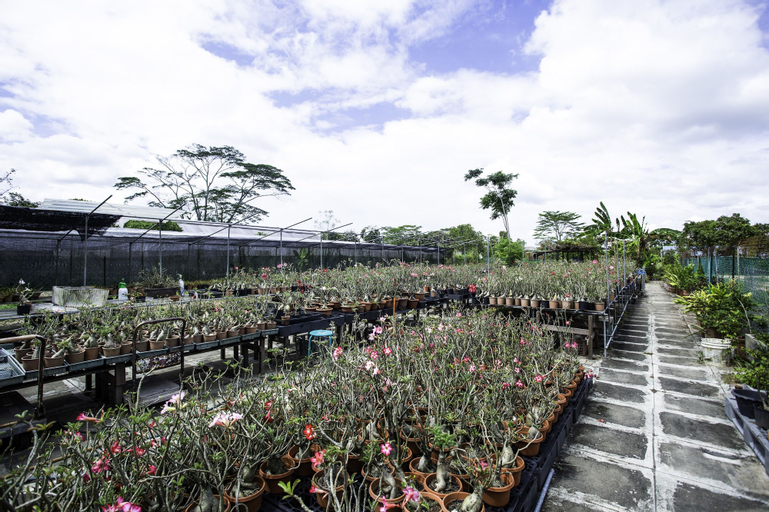 OYO 105 Gallop Kranji Farm Resort, Lim Chu Kang