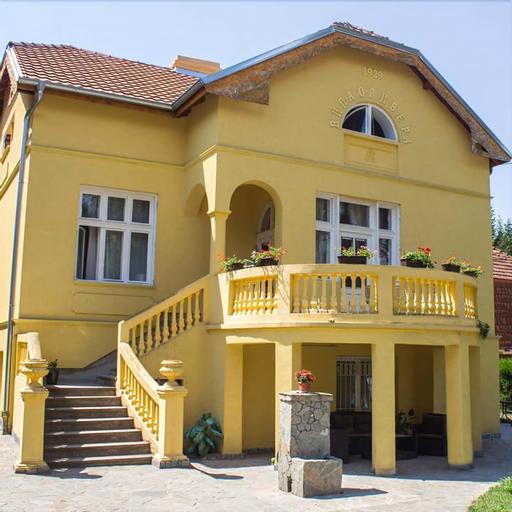 Vila Olivera Niska Banja, Niš