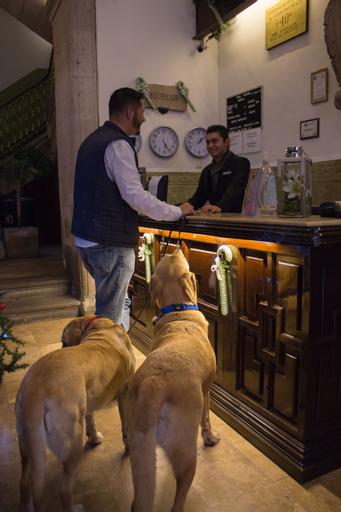 Hotel Historia, Morelia