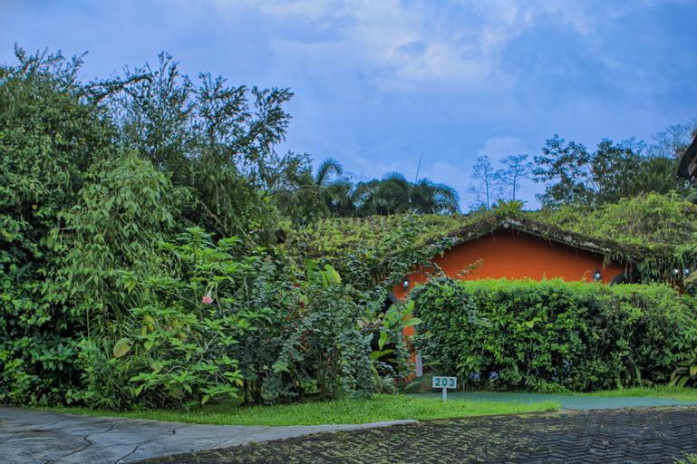 Mountain Paradise Wellness & Spa, San Carlos