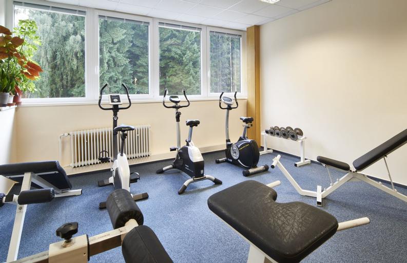 Wellness hotel Svornost, Semily