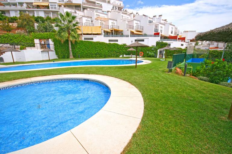 Palmeras GrupalMálaga, Málaga