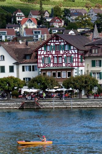 Hotel Rheingerbe, Stein