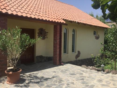 Yellow Guest House,