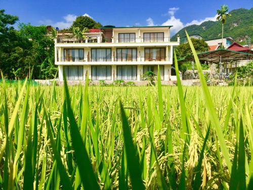 Mai Chau Green Rice Field Hotel, Mai Châu
