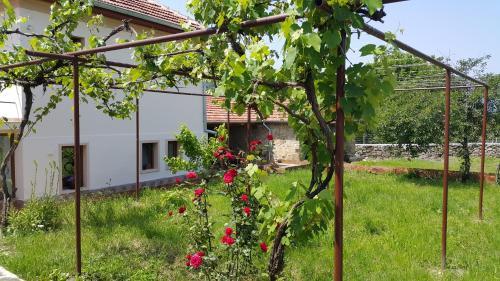Guest House Art Eco Land, Dryanovo