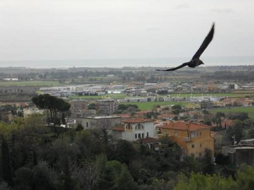 al castello, Viterbo