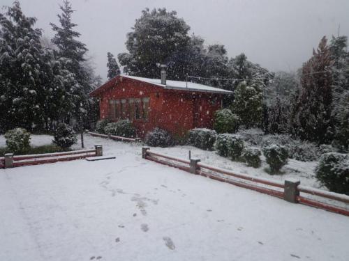 Puelche de Antuco, Biobío