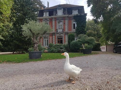 Château Lambert, Hainaut