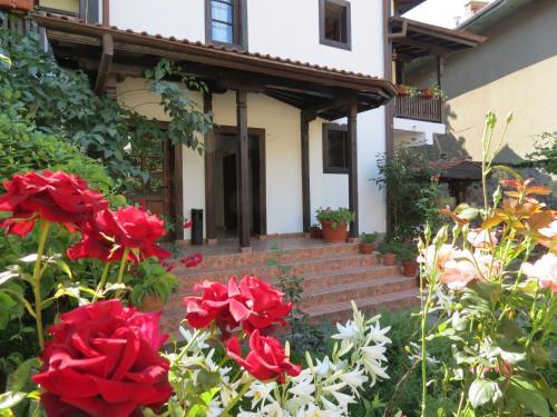 Oazis Guesthouse, Lovech