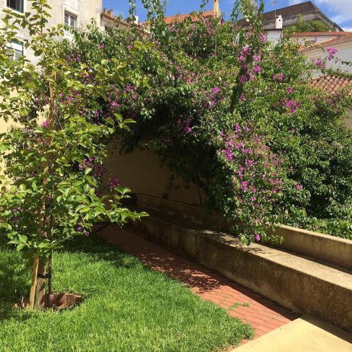 SOBRE RIBAS 2 12, Coimbra