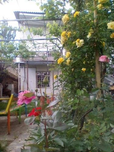 Retro guesthouse in Anaga, Signagi