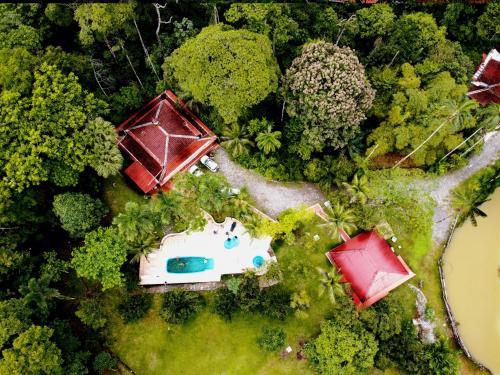 Cumaru Jungle Lodge, Arani