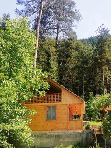 Guest House Ilia, Borjomi