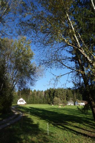 Baumzelt Waldesrand, Regen