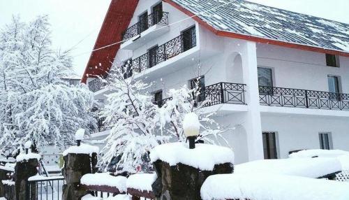 Hotel Белыи Дом, Borjomi