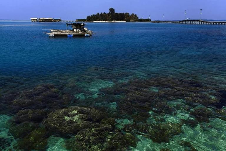 Enjoy Mermaid Pulau Pramuka, Thousand Islands