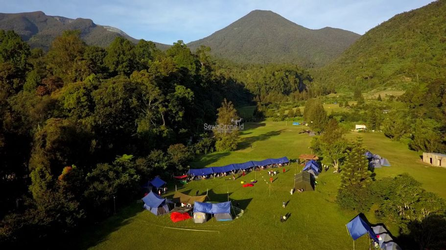 Mandalawangi Cibodas Camping Ground, Cianjur