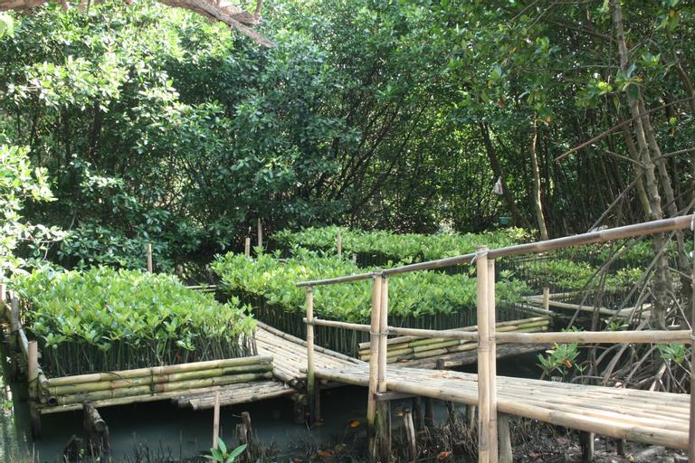 Taman Wisata Mangrove, Jakarta Utara