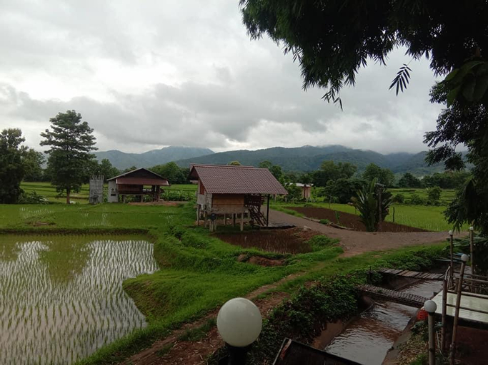 Suan Baan Puean, Pua