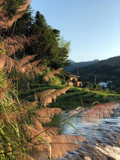 Wuyi Mountain Jiuquyuan Tea Garden, Nanping