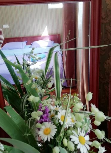 Guest house carpediem, Mestia