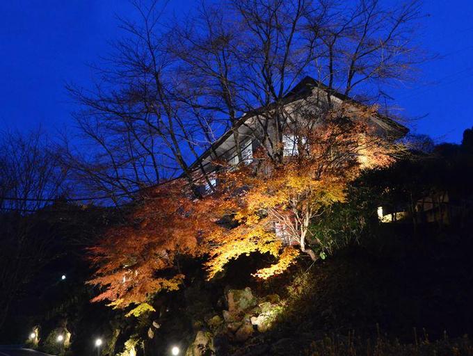 Misasa Garden Hotel, Misasa