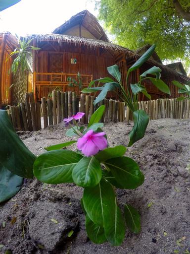 Adang Sea Divers & Eco Lodge, Muang Satun