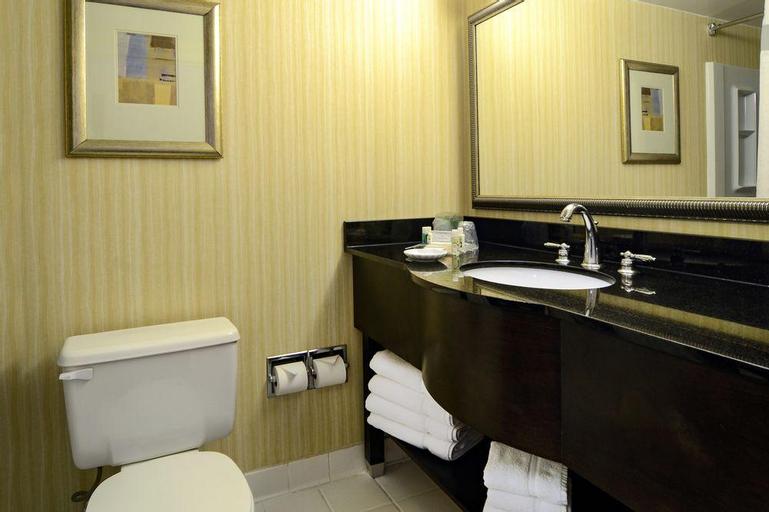 Holiday Inn Greenbelt Nasa/Goddard Area, Prince George's