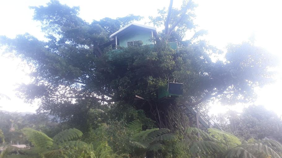Quarumanu Area, West Tanna