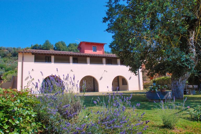 Lo Zolfino, Arezzo