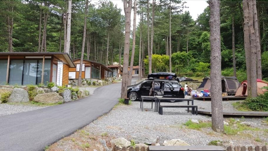 Yumyeongsan Healing Camp - Campsite, Gapyeong