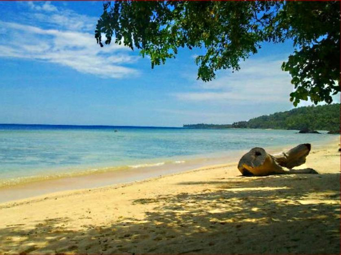Treasure Island Beach Resort, Panukulan