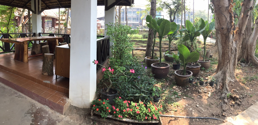 A Hotel Homey, Chiang Saen