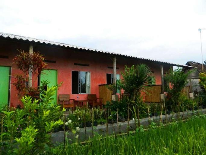 Ijen Asparin Homestay, Banyuwangi