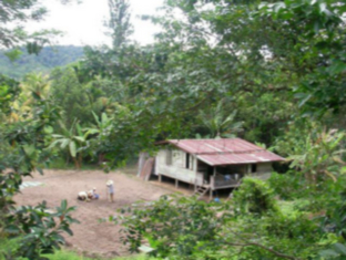 Tambunan Village Homestay, Tambunan