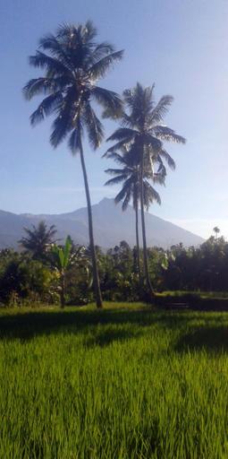 Hakiki Inn, Lombok